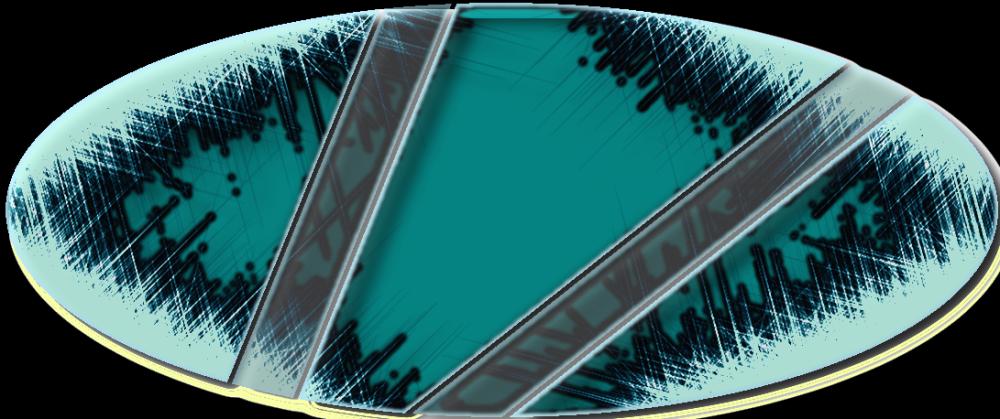 Vionix logo1